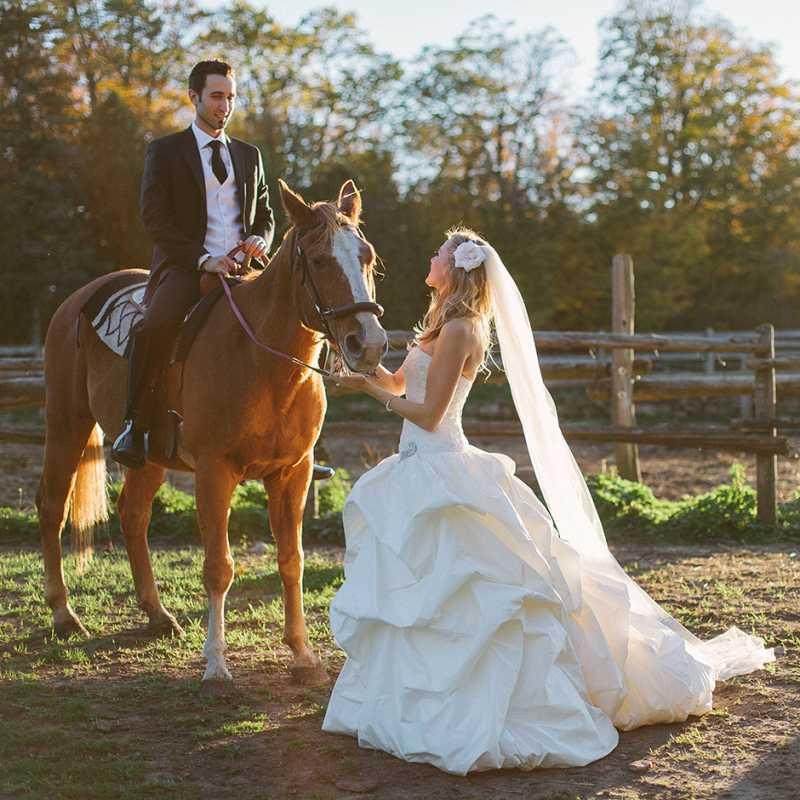 Toronto-Wedding-Photographer-with-horse-on-ranch.jpg